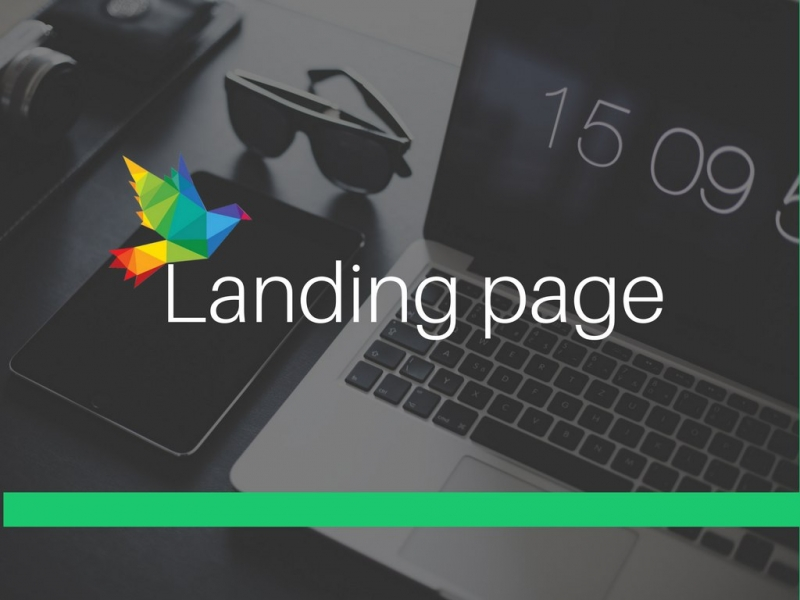 Лендинг  landing page  Сайт визитка  100