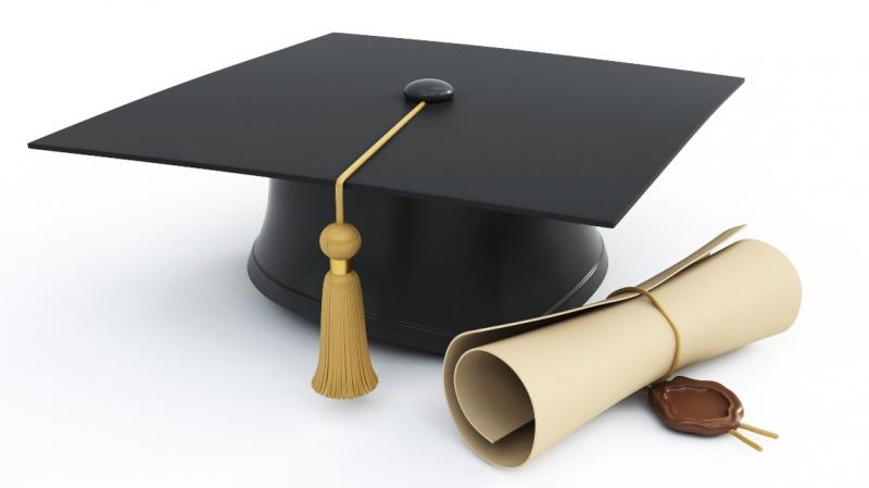 Заказ студенческих работ по всем дисциплинам, обучающие материалы, онлайн обучен